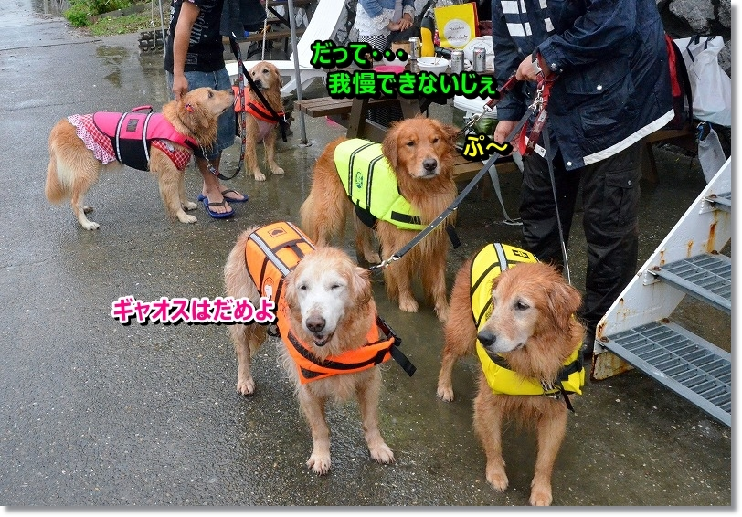 DSC_7350_20151020194548566.jpg
