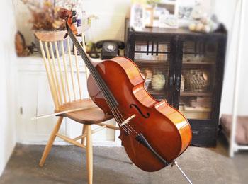チェロ楽器