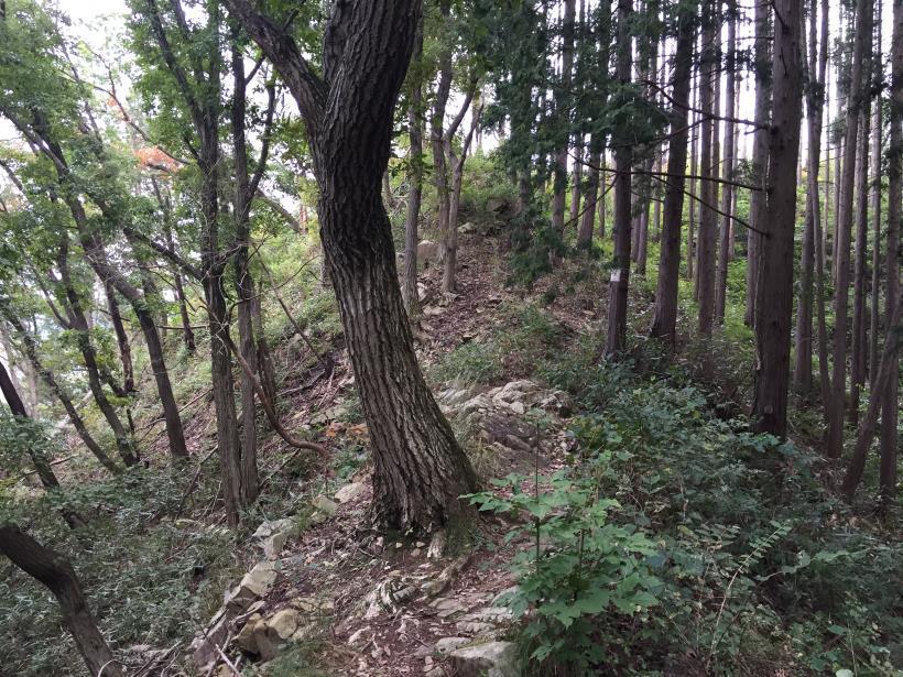 imakumakariyose102.jpg
