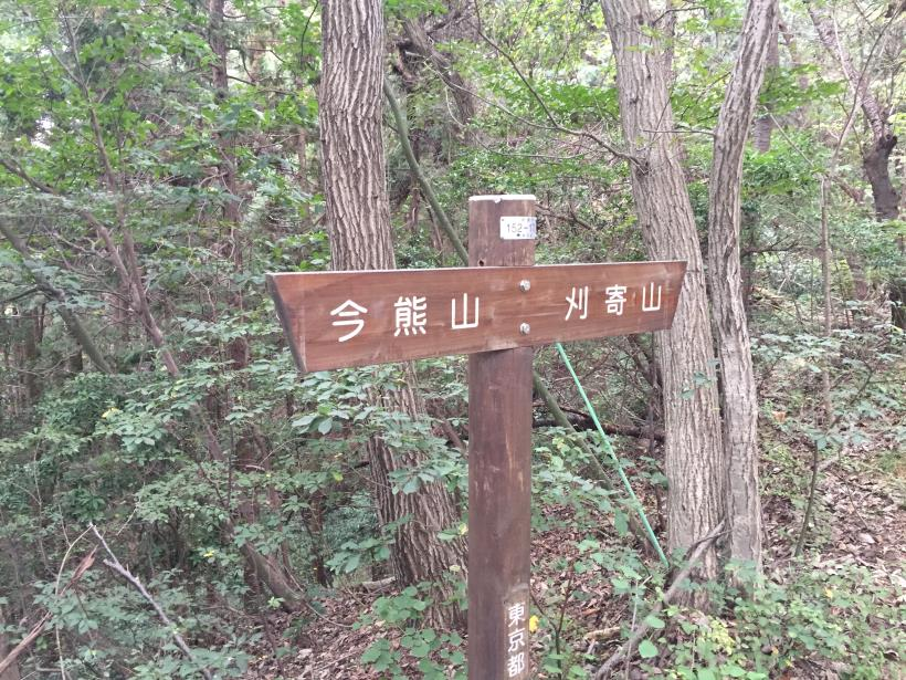 imakumakariyose51.jpg