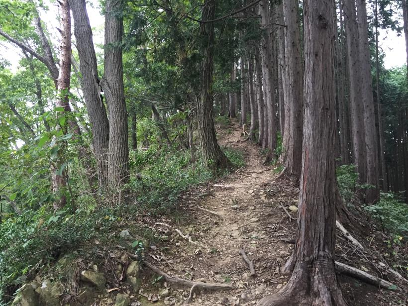 imakumakariyose93.jpg