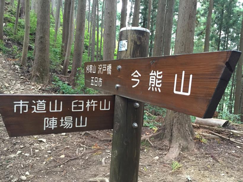imakumakariyose97.jpg