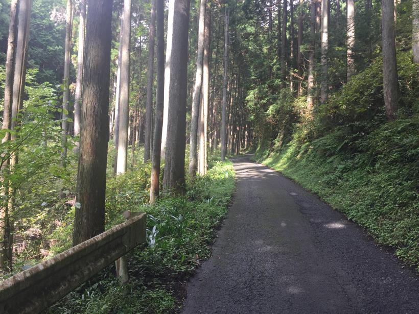 takayamahudousandou37.jpg