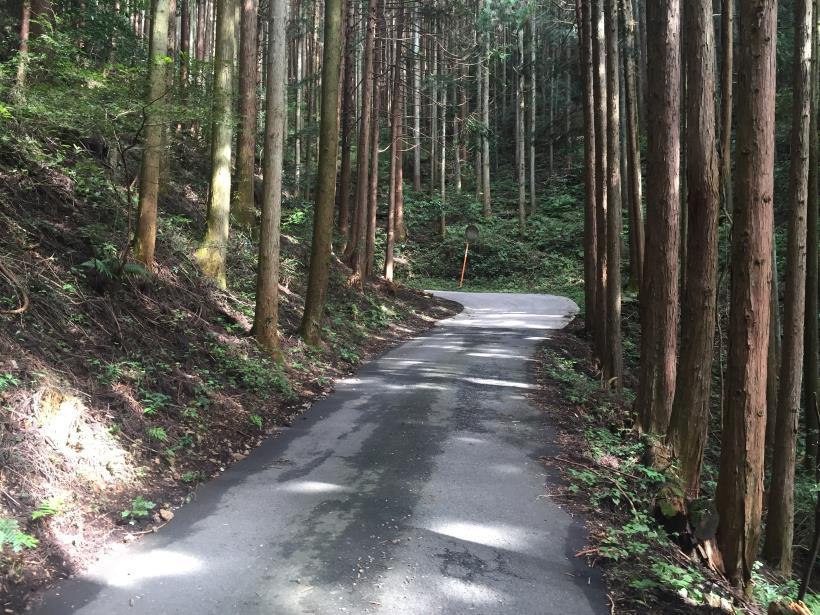 takayamahudousandou62.jpg