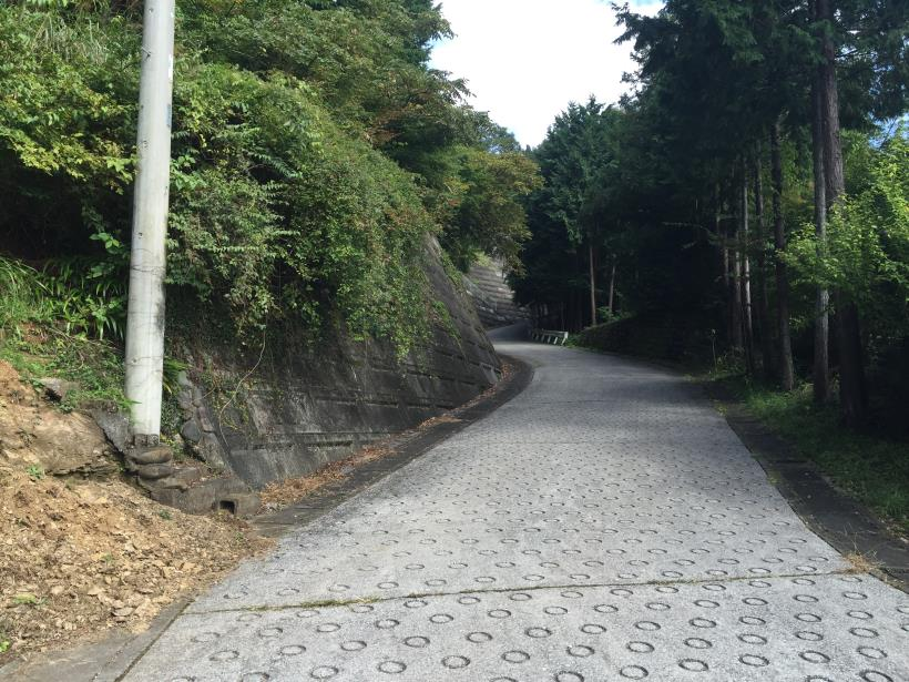 takayamahudousandou83.jpg
