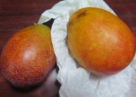 頂いたマンゴー