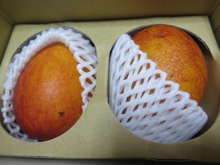 頂き物のマンゴー
