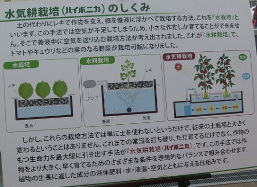 道の駅 御前崎