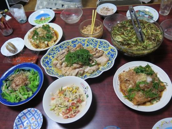 トンテキと厚揚げの晩御飯