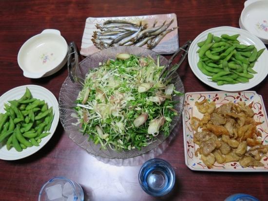 カツオたたきの薬味サラダ、ししゃも、とり皮せんべい、枝豆