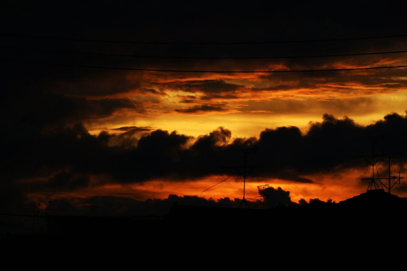 ●SA2015・8・31夕陽M_07