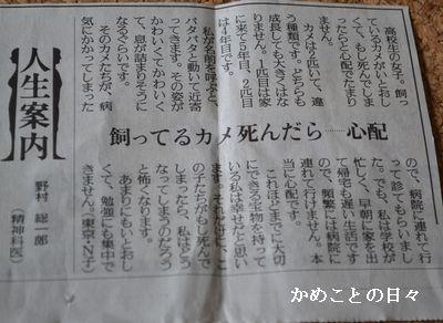DSC_0065-j.jpg