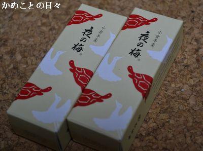 DSC_0119-k.jpg