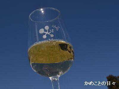 DSC_0547-wine.jpg