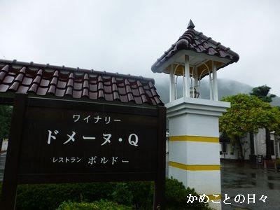 P1240946-q.jpg