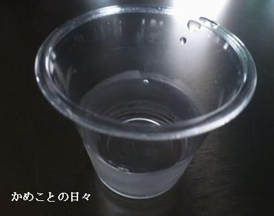 P1250087-r.jpg