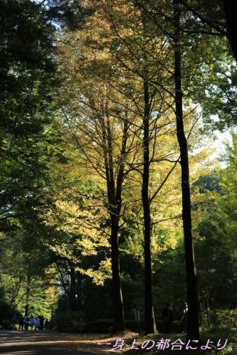 IMG_0283森林公園2