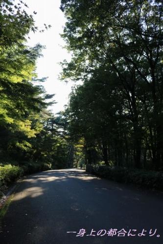 IMG_0289森林公園