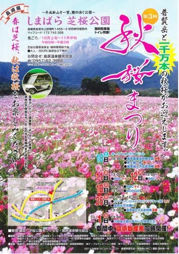 IMG 秋桜
