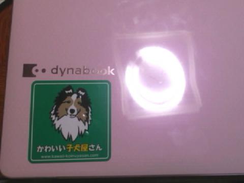 sticker6.jpg