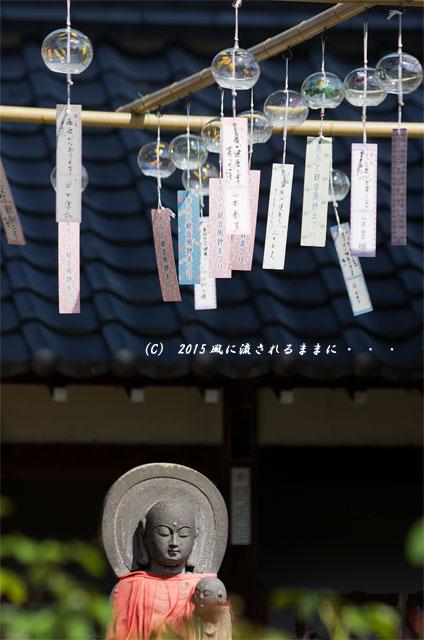 2015年8月撮影 奈良・おふさ観音 風鈴まつり5