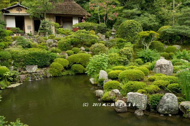 2015年8月撮影 雨の京都・等持院5