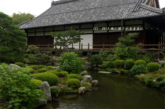 2015年8月撮影 雨の京都・等持院7