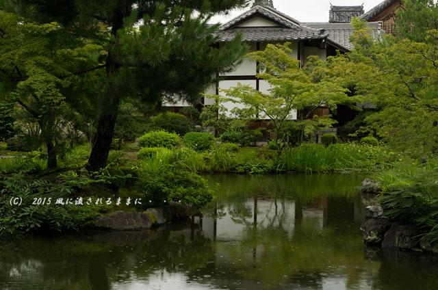 2015年8月撮影 雨の京都・等持院9
