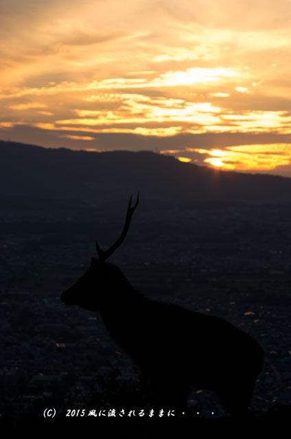 015年9月撮影 奈良・若草山から見た夜景と・・・、ちょっとだけ夕景(汗)1