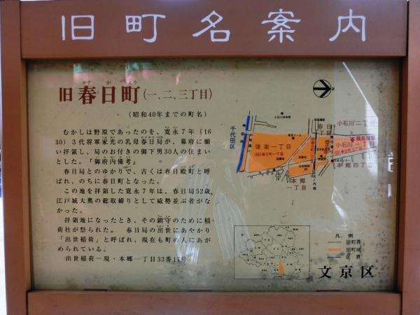 CIMG6410小石川