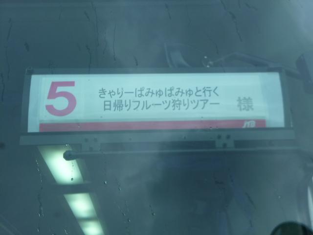 P1010266.jpg