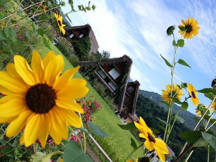 シルバーウィークを避けて、ゆったり落ち着いて白川郷を愉しまれる秋旅に…⑦