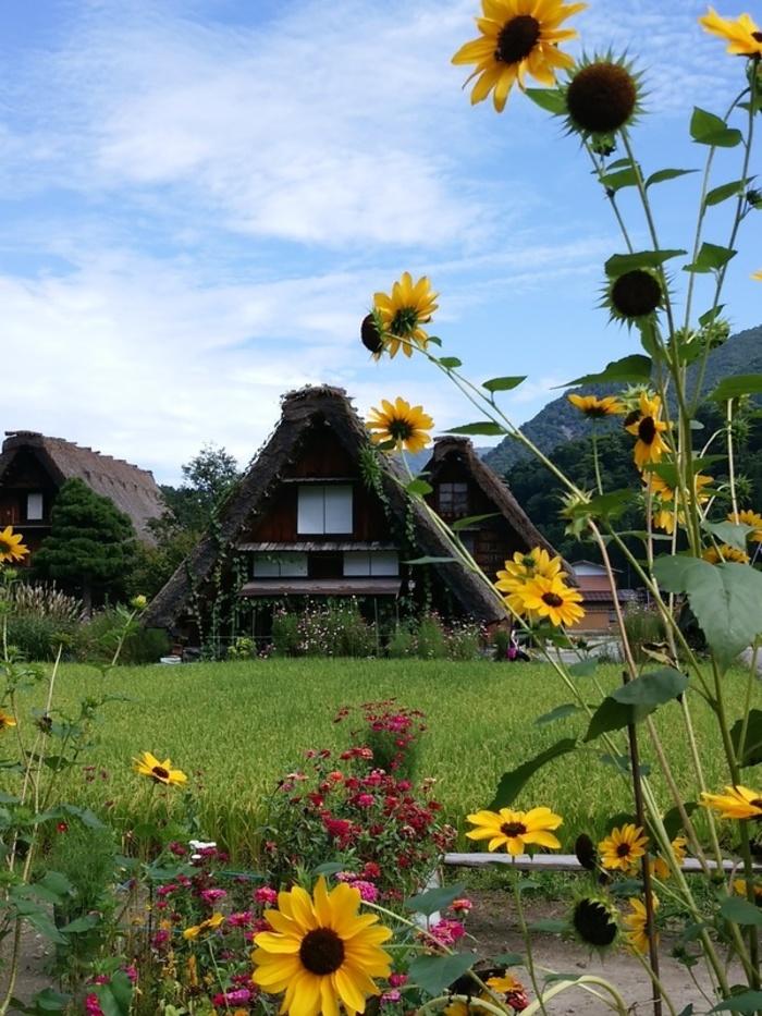 シルバーウィークの行楽として、日本の伝統や技術・文化に親しんでみませんか?世界文化遺産 白川郷 ①