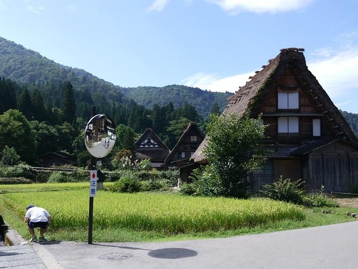 シルバーウィークの行楽として、日本の伝統や技術・文化に親しんでみませんか?世界文化遺産 白川郷 ③