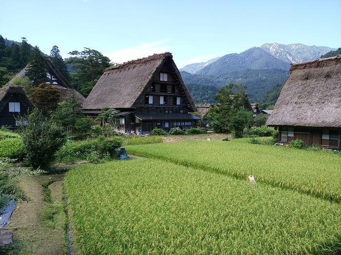 シルバーウィークの行楽として、日本の伝統や技術・文化に親しんでみませんか?世界文化遺産 白川郷 ④
