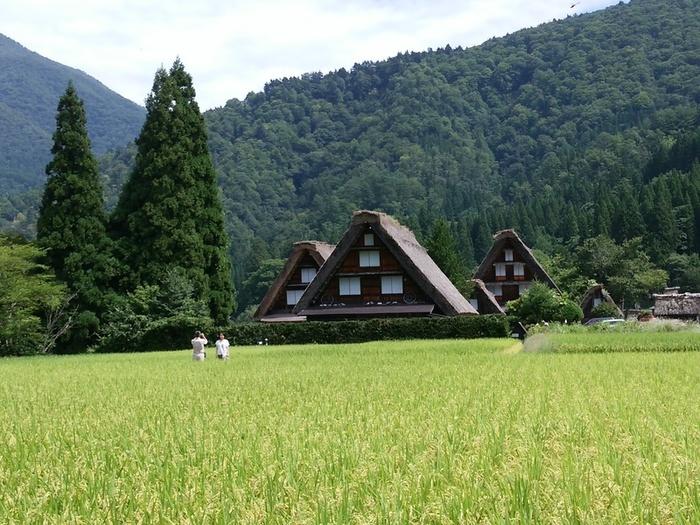 シルバーウィークの行楽として、日本の伝統や技術・文化に親しんでみませんか?世界文化遺産 白川郷 ⑧