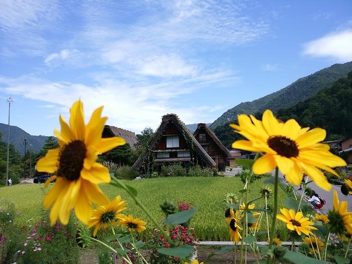 9月に取る夏休みシルバーウィークは世界遺産白川郷で寛ぎの一時 ⑦