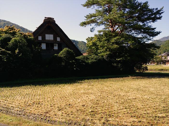秋の旅行は白川郷で決まり◎ ④