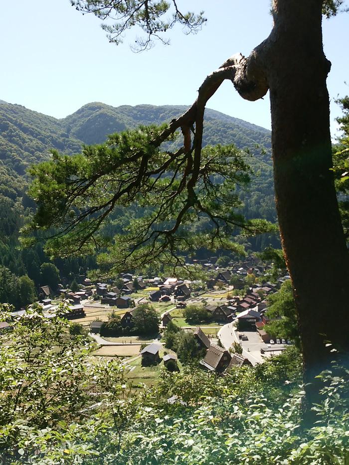 これからのシーズン秋はたくさんの色彩で深山が賑わう季節 白川郷 ②