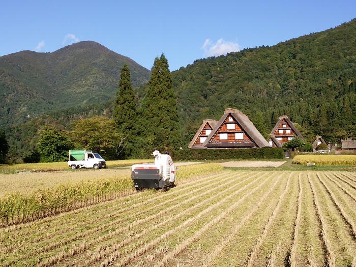 白川郷 稲刈りの後・・・・。 改めて季節の移り変わり&風景というのはアッ!という間だな~ ⑦