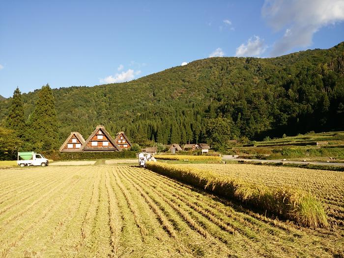 白川郷 稲刈りの後・・・・。 改めて季節の移り変わり&風景というのはアッ!という間だな~ ⑨