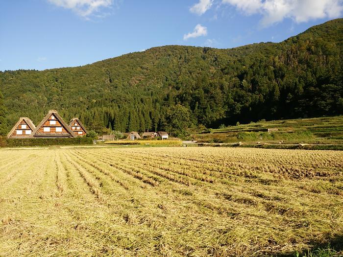 白川郷 稲刈りの後・・・・。 改めて季節の移り変わり&風景というのはアッ!という間だな~ ⑩