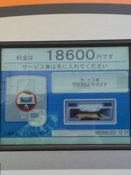 IMG_1428 1