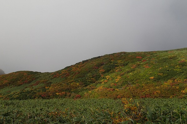 鳥海山の紅葉2