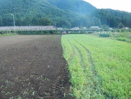 麦畑の耕起作業