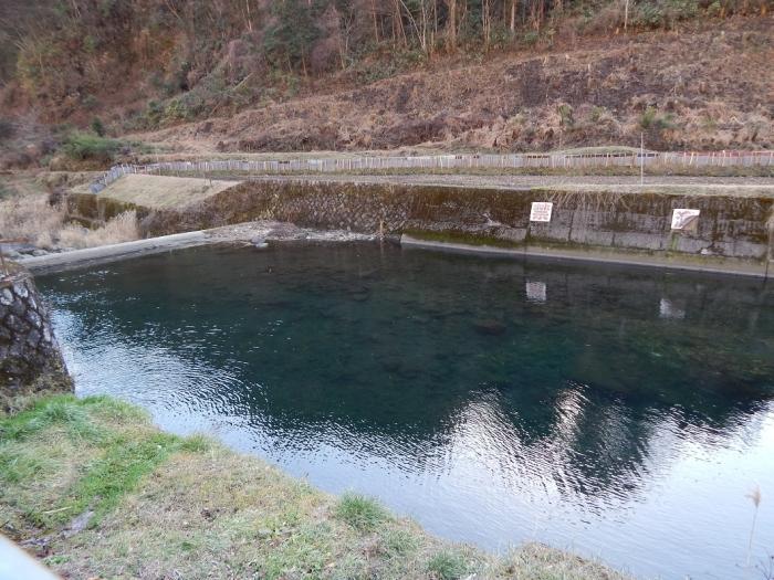 DSCN9790川走川第一取水堰