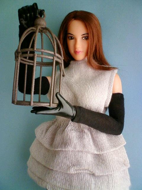 bird_cage2_c.jpg