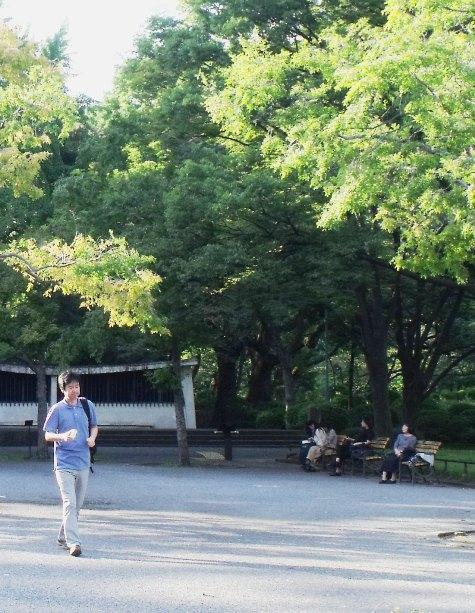 20150930 秋の山の風景 068-5