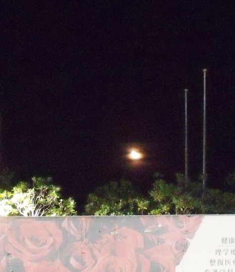 20150930 秋の山の風景 076-3