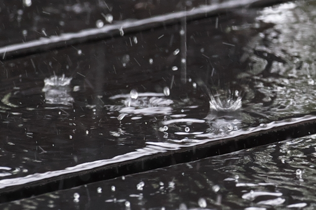 雨の滴-04
